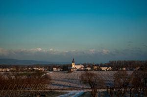 Naturfotografie Rheinland Pfalz Freisbach Winter - Michael Brückner